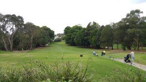 Bexley golf club sydney