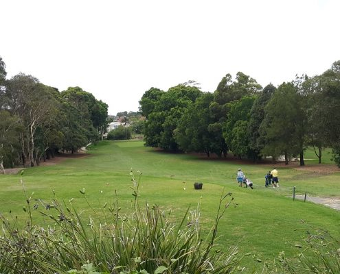 Bexley golf club sydney
