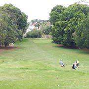 golf swing practice