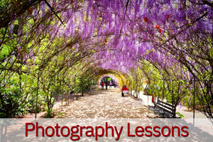 sydney photography lessons